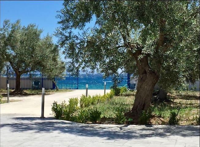 Amalfi Complex- Sea View
