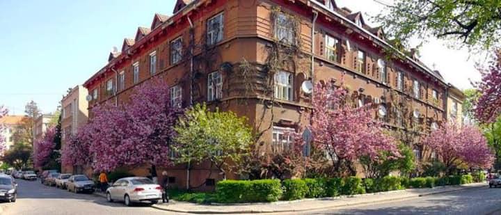 Простора квартира в історичному центрі Галагов!.