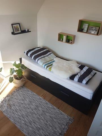 Soveplads i stuen. Sengen kan trækkes ud til en dobbeltseng