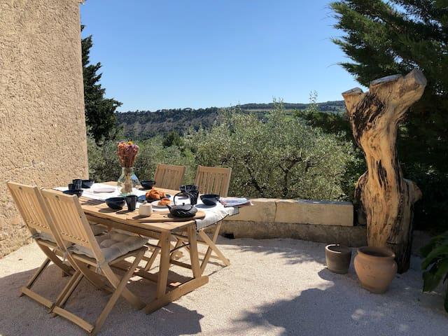 Mas provençal La Serallère au cœur des oliviers
