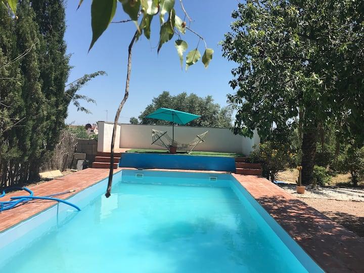 Villa de 2 chambres à Albatera, avec magnifique vue sur la montagne, piscine privée et jardin clos