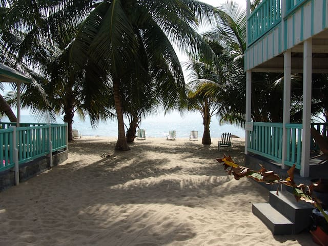 SeaSpray Hotel  (Economy Rooms) - Placencia - Annat