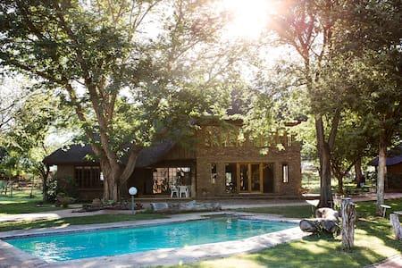 Beautiful weekend breakaway in the bushveld! Leeu