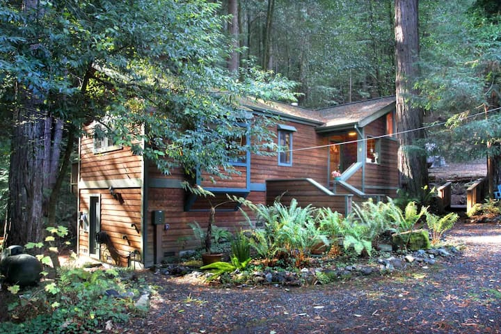 EUPHORIA: Hot Tub under Redwoods | Gas Fireplace