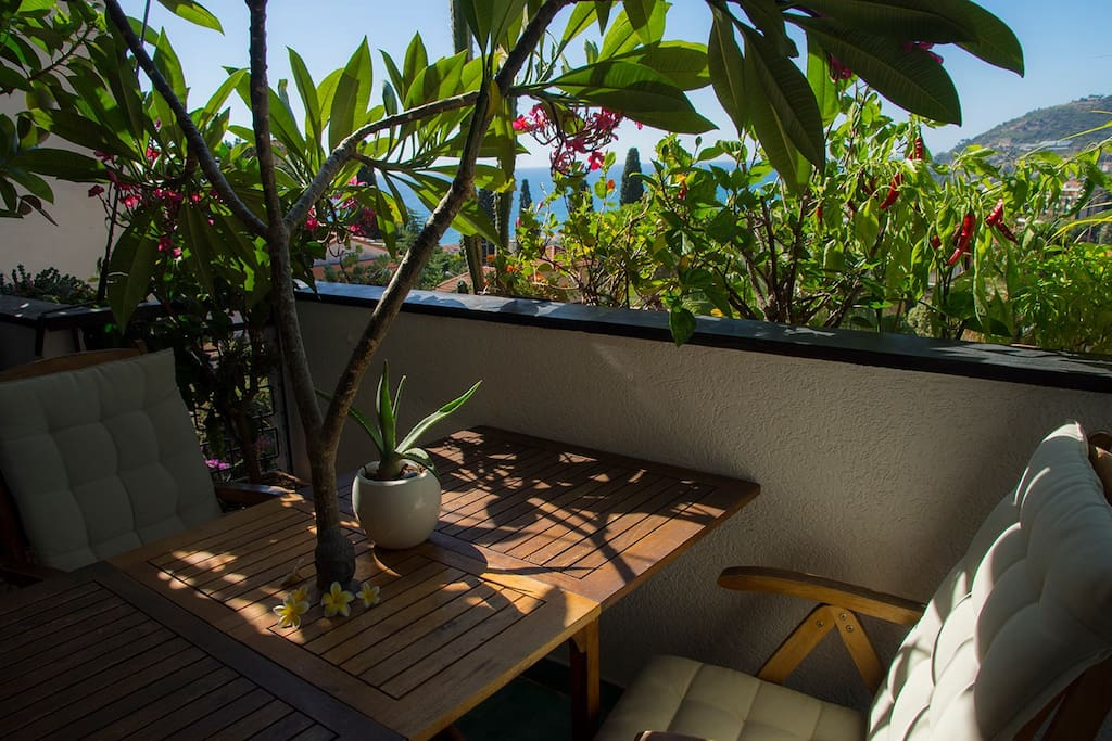 Dining on our south terrace facing under a flowering plumeria tree with views of the Mediterranean and the Alps.