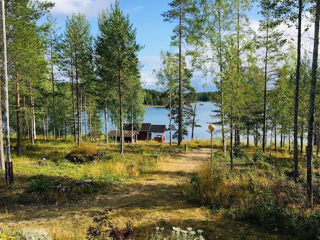Cozy little hut right next to Saimaa Lake