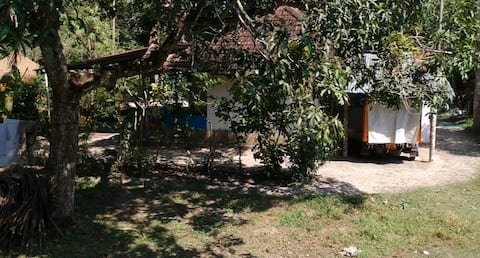Allepy homestay with a view
