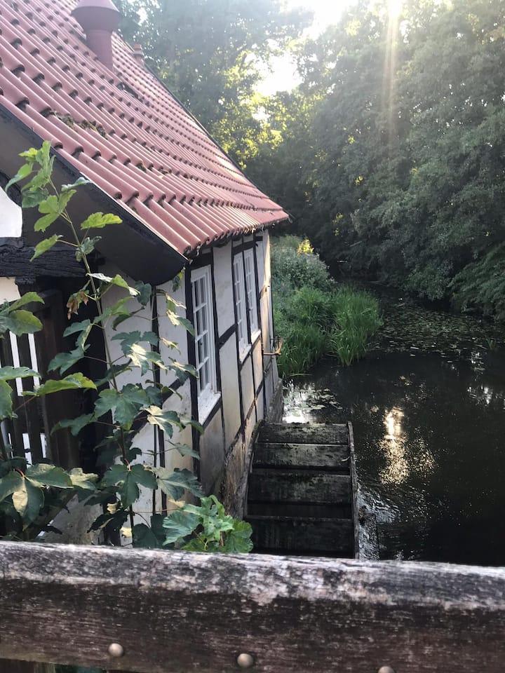 """Münsterland Cottage """"Das Mühlchen"""""""
