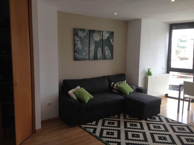 CENTRICO Y NUEVO - WIFI - Logroño - Wohnung