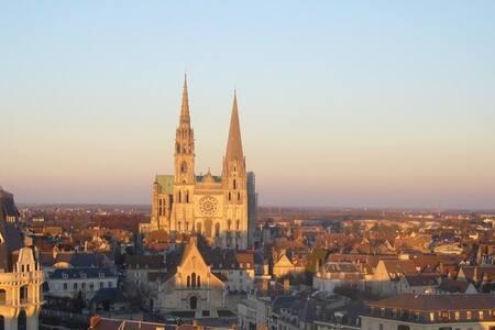 T2 centre Chartres avec vue sur la cathédrale - Chartres - Apartemen
