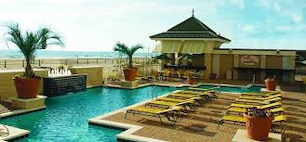 Ocean Beach Club. 4 star hotel - หาดเวอร์จิเนีย
