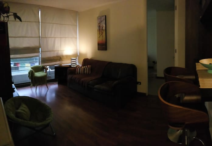 Room one Block from Downtown ! - Santiago - Appartamento