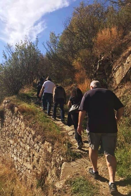 Walking the Roman Road
