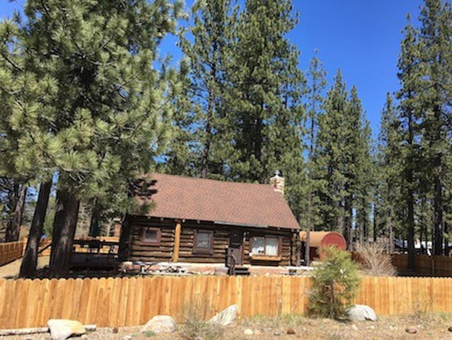"""Jon's Place"" Pioneer Log Cabin - Pet Friendly"
