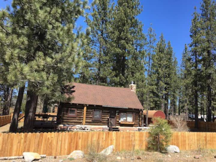 """""""Jon's Place"""" Pioneer Log Cabin - Pet Friendly"""