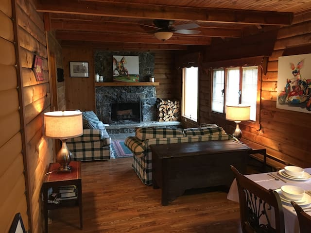Cozy log cabin by Owasco Lake - Auburn - Maison