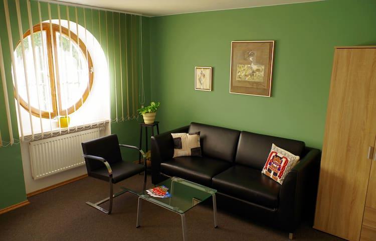 Útulný pokoj v klidné vilové čtvrti