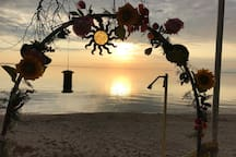 Who visits the VITAMIN SEA Airbnb right on the Beach?   I share my home with nice people from ALL OVER THE WORLD,  birds, sea-life, Reindeer, Moose, Chipmonks, Squirrels,  Rabbits, Hummingbirds,  families of 12/13 Ducklings and the smart Black Crows.