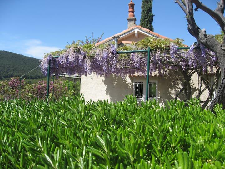 Cabanon provençal typique