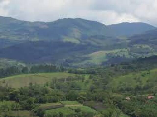 Viva en el campo de Costa Rica, cerca de la costa