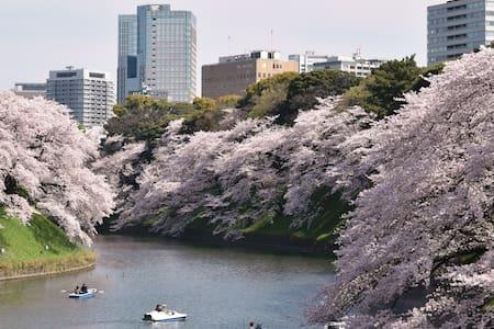Heart of Yanaka, Access Narita 36min Free wifi - Arakawa-ku - Byt