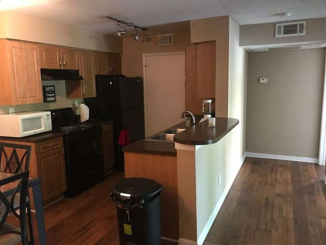 Luxury Sandy Springs apartment 2Bed 2Bathroom - Sandy Springs - Daire