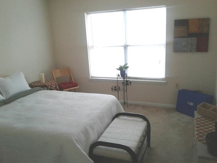 Quiet private room + bath with free parking in DC