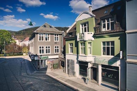 Bergens best Location, Open and bright Apt - Bergen - Leilighet