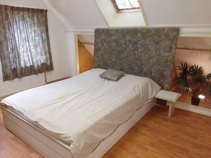 Mooie Green Room om Drenthe te ontdekken.