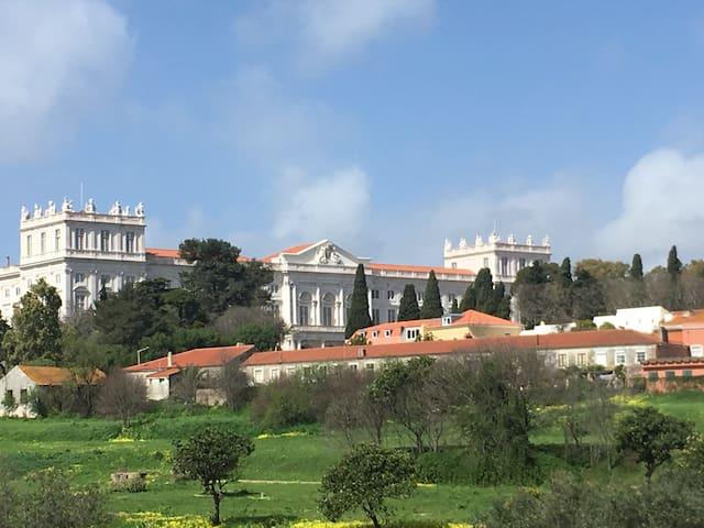 Ajuda Palace, your balcony view