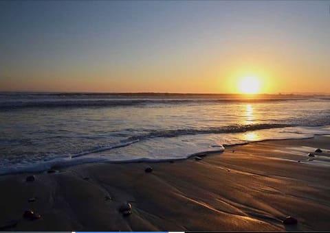 Tropical Retreat By The Beach