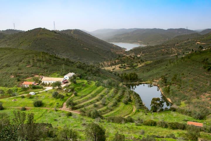 Urlaub im Tal des Königs - São Bartolomeu de Messines - House