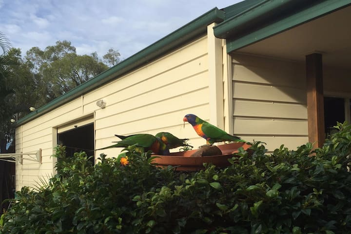 Lorikeet Room, Private Rm, Fabulous Accommodation - Dundowran Beach - Bed & Breakfast
