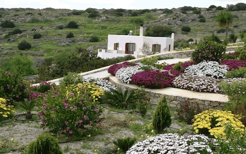 Mallia luxury studio with view