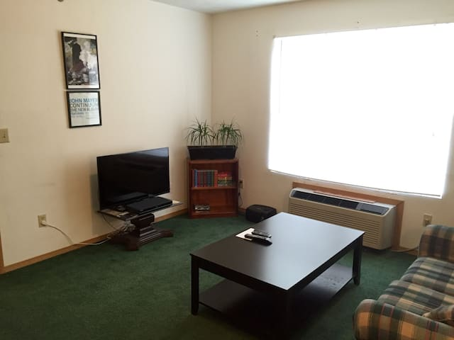 Sun-filled living room space, with Smart TV, Blu-Ray player, and plenty of books to read!