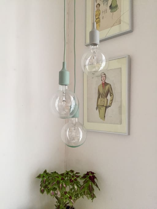 Trendy light bulbs that can be dimmed.
