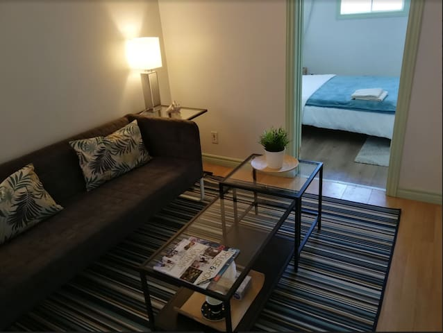 Economy 1Bed/1Bath Suite 1 Min from Subway (95-4)