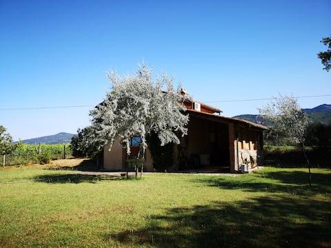 il Fienile - (Alloggio rurale tipico toscano)