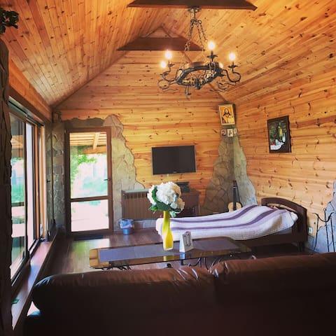 Усадьба «Диброва» с озером и лесом