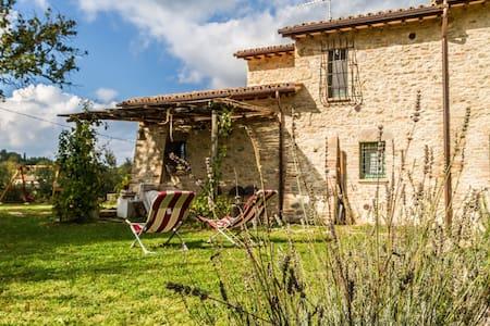 Il Colle sulla Flaminia - Casa vacanze Todi - Todi - Huoneisto