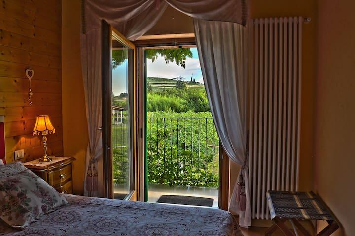 Relax in Valpolicella - La Palma Negrar