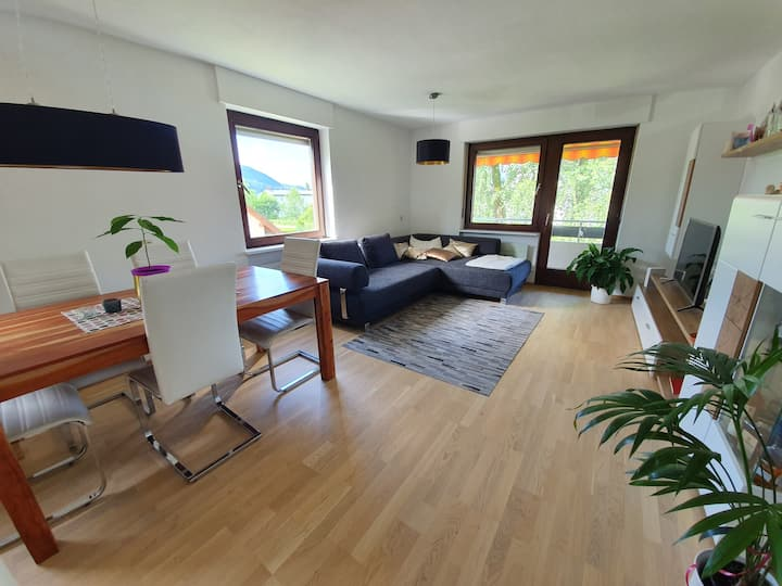 cozy 1-bedroom apartment with WiFi and Netflix