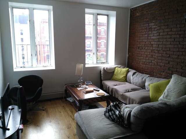 Large, comfortable 1 bedroom near Central Park