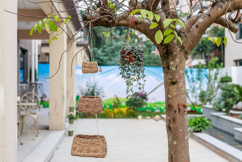 院落    种有海南热带水果,不同的季节不同的鲜果欢迎您!