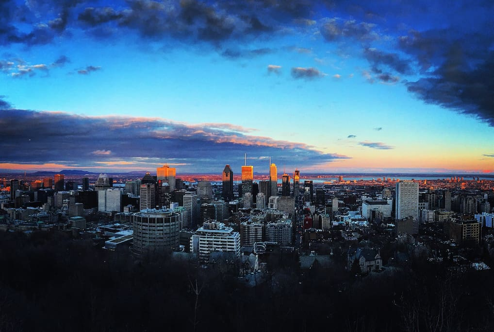Room For Rent Downtown Montreal