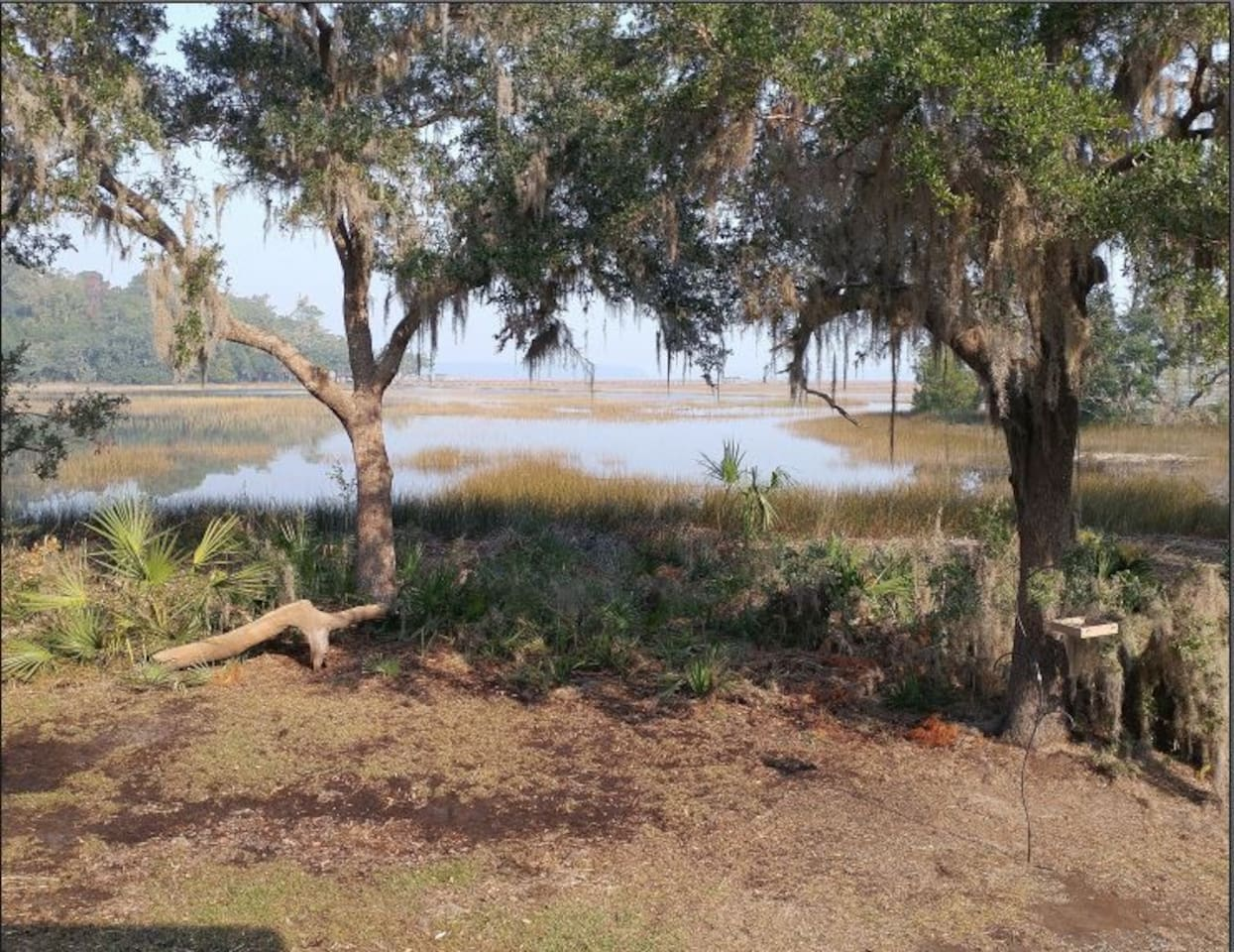 View Off the Back Porch at High Tide