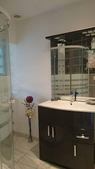 La salle de bain avec douche Multi-jets