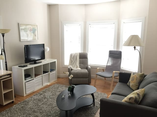 Bright, Clean 1BR with Old World Charm