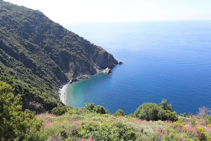 Riomaggiore -Cinque Terre : superbe maison vue mer