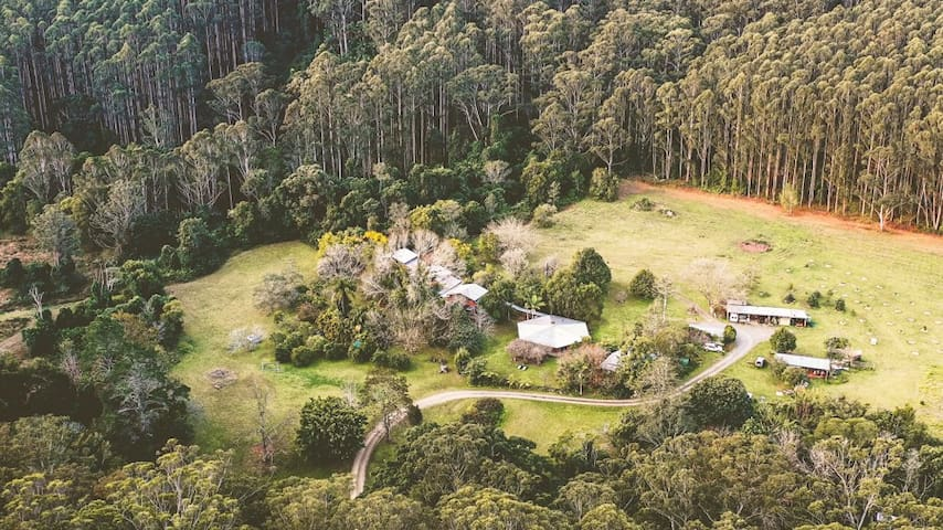 The Kingfisher Guesthouse at Falls Forest Retreat